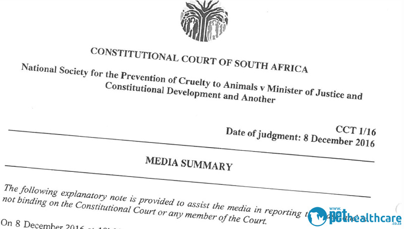 A Big Win for the NSPCA | pethealthcare.co.zaNSPCA is now ...