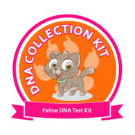 DNA Collection Kit for Feline DNA Testing