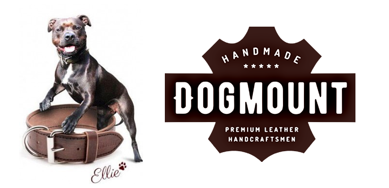 Dog Mount, Leather Dog Collars, superior quality,  comfort , safety,  luxury leather dog collars ,  canine friend , selecting the perfect collar , train your dog,  when your dog is indoors, Leather collars, Nylon collars, Nylon blend collars, Canvas collars, Metal chain collars, Suede collars, Faux leather collars, Dog parenting, pet accessories, pet insurance, pet care, luxury pet care
