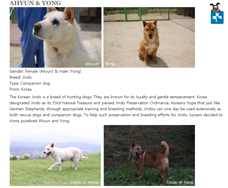 Would you clone your dog, Dog Cloning, Sooam Biotech, South Korea, Book, review, Animal Cruelty