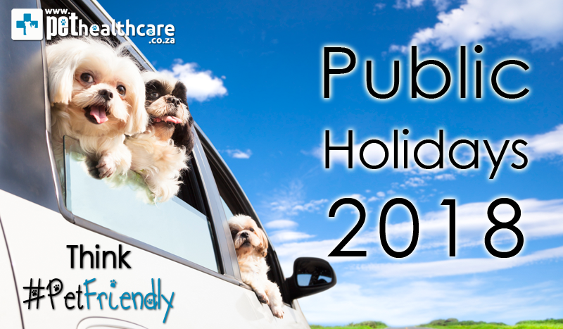 Pet Friendly Holiday Destinations