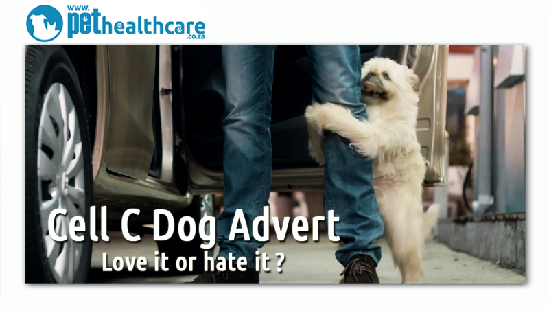 Cell C Dog Advert