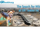 Lost dog, Crating, Dog escapes crate, leash, collar, tag, OR Tambo International, Airport, puppy nightmare, family nightmare, dieregesondheid, Animal Health, Pet Insurance, diere versekering, troeteldierversekering suid afrika, South Africa, Pet Health Care, Pet Care health, petcarehealth, pethealthcare, ask the vet, dieremaniere, animal behaviour, sick animals, siek diere, honde, katte, Cats, Dogs, veterinary advice, dog walks, dog events, pet wellness, kitten care health, pet care health insurance,