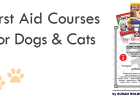 First Aid Courses for Pets, Pet Healthcare, Susan Holdsworth, South Africa Emergency Pet Care, Snake Bite Treatment,