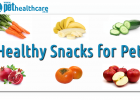 Healthy snacks for pets, dieregesondheid, animal health, pet insurance, diere versekering, troeteldierversekering suid afrika, south Africa, Pet Health Care, pet care health, petcarehealth, pethealthcare, ask the vet, dieremaniere, animal behaviour, sick animals, siek diere, honde, katte, cats, dogs, veterinary advice, dog walks, dog events, pet wellness, kitten care health, pet care health insurance, pet insurance health, pet care news, pet health care questions, pet care health claim form, pet care health