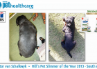 Hill's Pet Slimmer of the year 2013 South Africa Hector van Schalkwyk