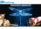 Dragonfly Pet Harnesses, Pet Accessories, Cats, Dogs, Pets