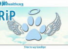 RIP Pets Memorabilia Cemetary Saying goodbye angel wings