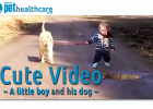 dieregesondheid, animal health, pet insurance, diere versekering, troeteldierversekering suid afrika, south Africa, Pet Health Care, pet care health, petcarehealth, pethealthcare, ask the vet, dieremaniere, animal behaviour, sick animals, siek diere, honde, katte, cats, dogs, veterinary advice, dog walks, dog events, pet wellness, kitten care health, pet care health insurance, pet insurance health, pet care news, pet health care questions, pet care health claim form, pet care health application form, pet he