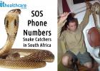 Snake catchers South Africa
