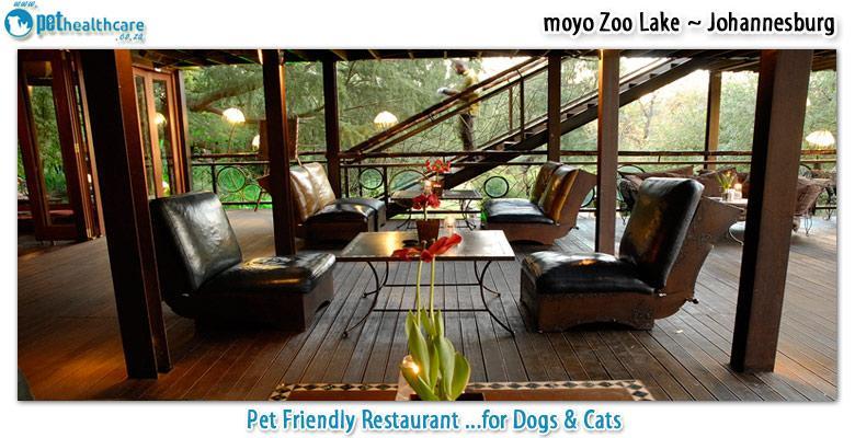 Moyo Zoo Lake Pet Health Care