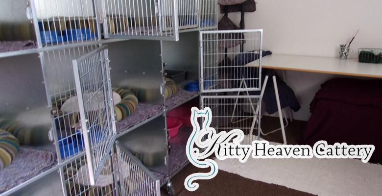 Kitty Heaven Cattery Pet Health Care