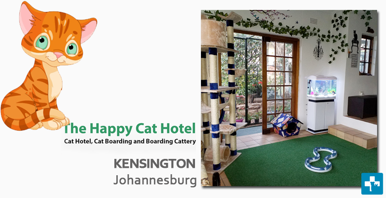The Happy Cat Hotel And Boarding Cattery Pet Health