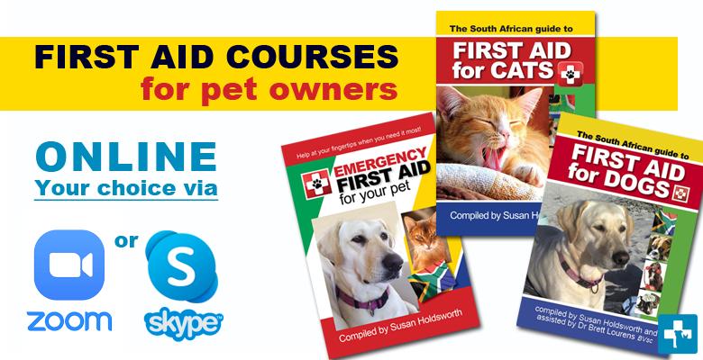 開車帶狗出遊 物品你備齊沒? | 台灣動物新聞網 |First Aid For Pets Files