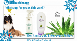 Forever Living Aloe Care Pet Shampoo Skin Allergies