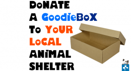 Goodie box, Donate, donate shoebox, mdzananda animal clinic, animal shelter, DIY ideas, community help, pet healthcare