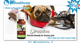 Pet Alive Feelgood Health Pet Health Care PetCalm remedy Anxious Pets