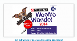 SPCA Cape Town, Woefie Wandel, Dog Walk,